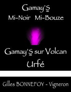 Gamay's Mi-Noir Mi-Bouze